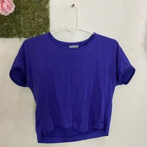 Zara Blue Crop T shirt